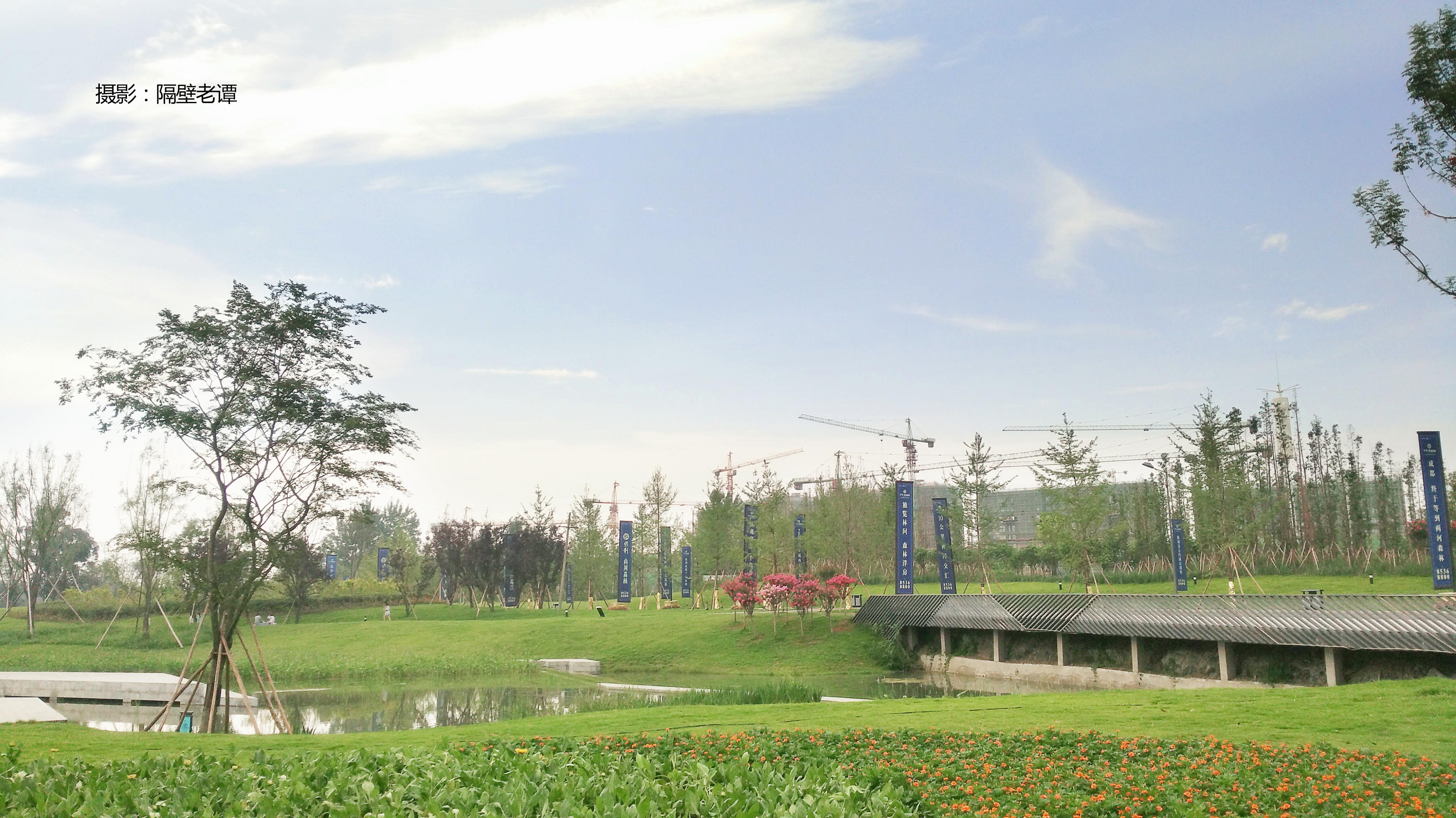成都 两河 森林公园第二期