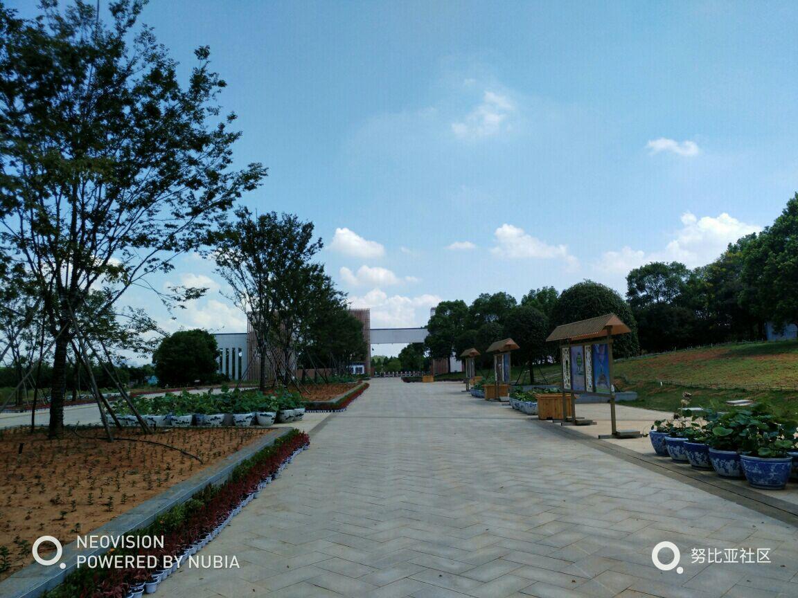 江西省凤凰沟风景区位于江西南昌县黄马乡,现已成为国家aaaa级旅游