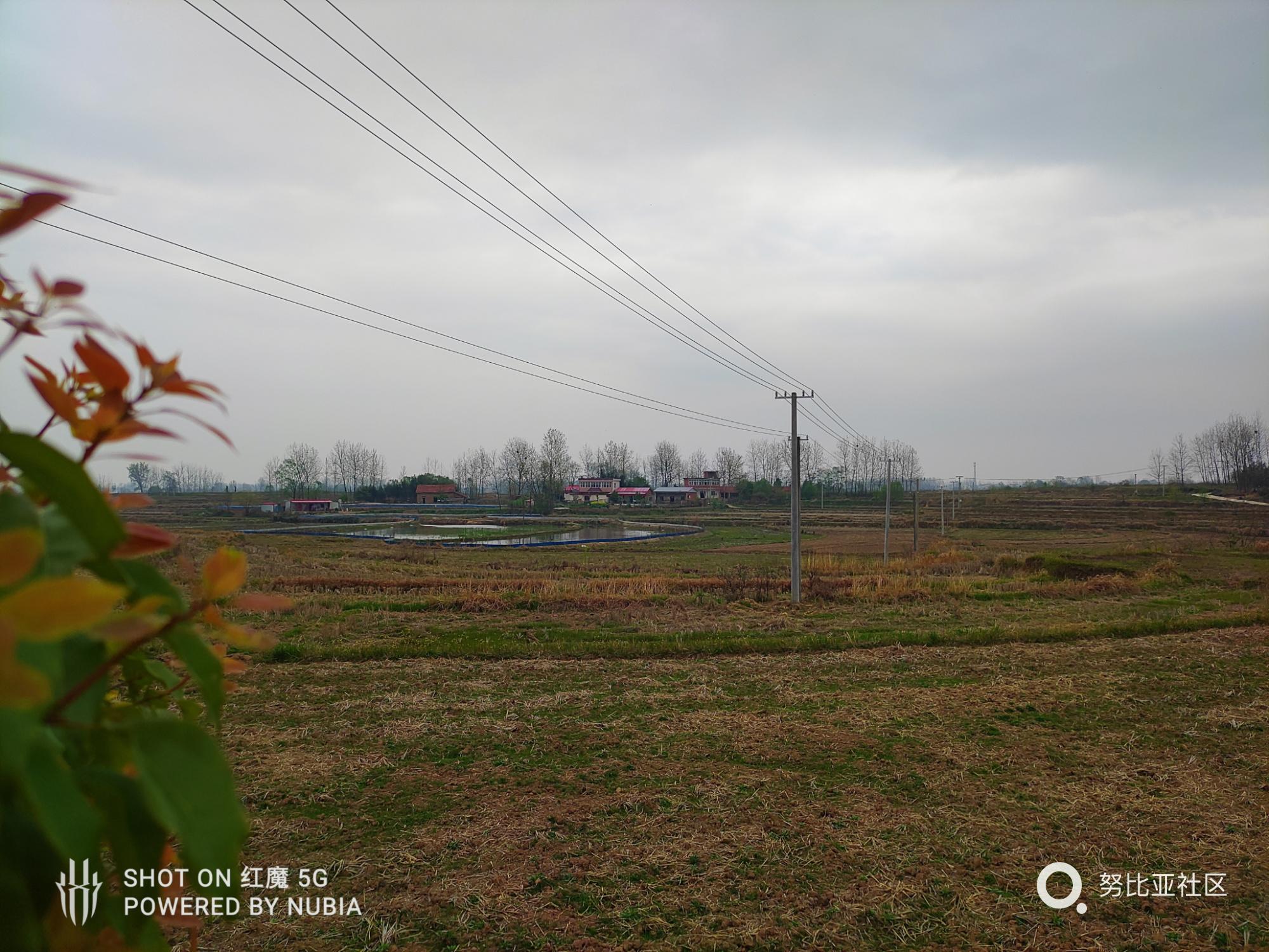 QQ图片20200326232434.jpg