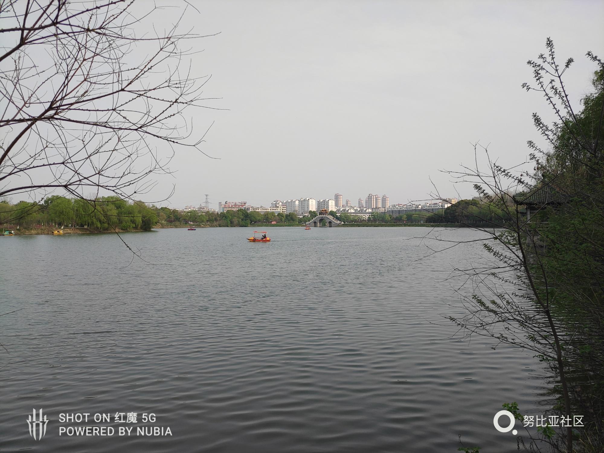 QQ图片20200326232350.jpg