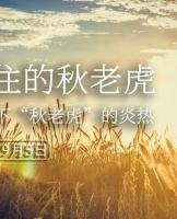 """已开奖「有奖摄影」拍下""""秋老虎""""的炎热"""