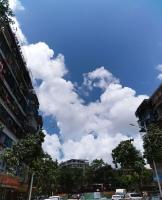 今天的天气,风和日丽,阳光明媚!久违了这么蓝的天,犹如一块晶莹剔透的蓝宝石;久见这么白的云,就像棉花一样洁白无暇!阳光妩媚,却没有夏日的炙热,这要多亏了凉风的帮