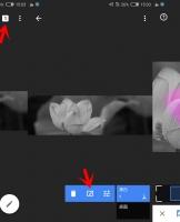 【黑白与彩色的碰撞】如何在单色照片中拾取单一的颜色?